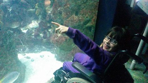 A young child in a wheelchair points into an aquarium in The Deep